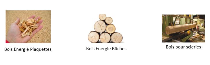 Modes de revalorisation de bois de la Plateforme de Goncellin